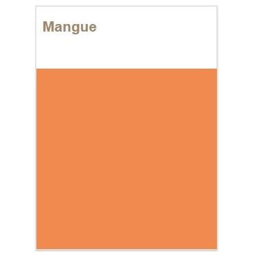 Décojoint Mangue