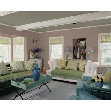 Cygnus Peinture naturelle bio écologique Mat Lavable Galtane EOS 2 salon salle à manger séjour